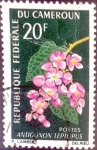 Stamps : Africa : Cameroon :  Intercambio nfxb 0,20 usd 20 fr. 1966