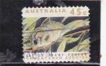 Stamps Australia -  roedor
