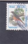 Stamps : America : Brazil :  ave- turdus rufiventris