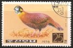 Stamps North Korea -  Necked pheasant-faisán común