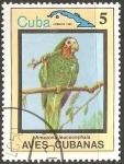 Stamps : America : Cuba :  Aves cubanas-amazona leucocephala