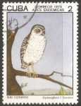 Stamps : America : Cuba :  Aves endemicas-siju cotunto