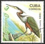 Sellos del Mundo : America : Cuba : agamia agami