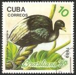 Sellos de America - Cuba -  Psophia leucoptera