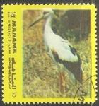 Sellos de Asia - Emiratos Árabes Unidos -  Aves de Manama (Ajman)