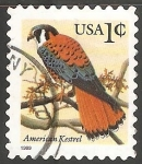 Sellos de America - Estados Unidos -  American kestrel-Falcão-americano