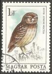 Stamps Hungary -  kuvik athene noctua-buho