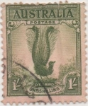 Sellos de Oceania - Australia -  Y & T Nº 88