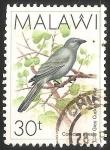 Sellos del Mundo : Africa : Malawi : Grey cuckoo shrike