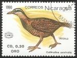 Sellos del Mundo : America : Nicaragua : Gallirallus australis