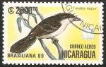 Sellos de America - Nicaragua -  Taraba major