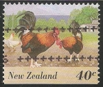 Stamps : Oceania : New_Zealand :  Gallinas