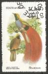 Sellos de Asia - Omán -  Bird paradise- Ave del paraiso