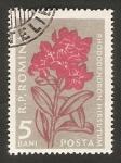 Sellos de Europa - Rumania -  Flor rhododendron hirsutum