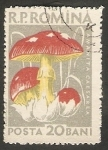 Sellos de Europa - Rumania -  Champiñón amanita caesarea