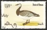 Sellos de Asia - Omán -  Bernicle goose-Ganso de lapa