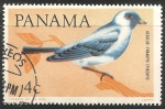 Stamps : America : Panama :  Thraupis episcopus-azulejo de jardín