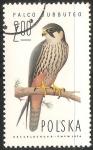 Stamps : Europe : Poland :  Falco subbuteo-halcon