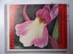 Sellos de Europa - Bulgaria -  Flora: Orquídea (Yvert/Bu:2987)