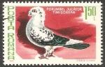 Sellos de Europa - Rumania -  Porumbel jucator timisorean-paloma
