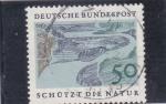 Stamps Germany -  naturaleza