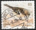 Stamps Switzerland -  Aves