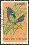 Sellos de Asia - Tailandia -  Pseudochelidon sirintarae-Río blanco de ojos martin