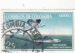 Sellos de America - Colombia -  pez volador