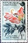 Stamps : Africa : Gabon :  Intercambio dm1g2 0,20 usd 1 fr. 1961