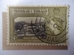 Stamps America - Trinidad y Tobago -  Government Housew - Queen Elizabeth II (Mi/163)