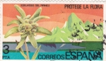 Stamps : Europe : Spain :  edelweiss del pirineo (22)
