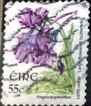 Sellos del Mundo : Europa : Irlanda : Intercambio 1,50 usd  55 cent. 2007