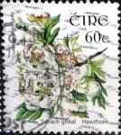 Sellos del Mundo : Europa : Irlanda : Intercambio 1,90 usd  60 cent. 2004