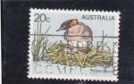 Sellos de Oceania - Australia -  ave- little grebe