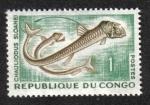 Sellos de Africa - República del Congo -  Chauliodus sloaneis (Brazzaville)