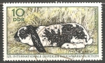 Stamps Germany -  Kaninchen-conejo