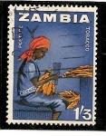 Sellos de Africa - Zambia -  Trabajadora en plantación tabaquera