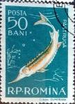 Stamps Romania -  Intercambio 0,20 usd 50 b. 1957