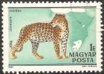 Sellos de Europa - Hungría -  Leopardo