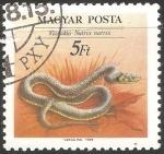 Sellos de Europa - Hungría -  Natrix natrix-culebra de collar