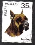Sellos de Europa - Rumania -  Perros 71, German Boxer (Canis lupus familiaris)