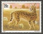 Sellos del Mundo : Africa : Rwanda : Felis aurata-gato dorado africano