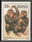 Sellos de Africa - Rwanda -  Chimpanzes