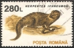 Sellos de Europa - Rumania -  Herpestes ichneumon-mangosta común