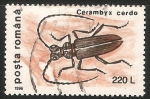 Sellos de Europa - Rumania -  Cerambyx cerdo