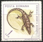 Stamps Romania -  Eremias arguta deserti-lagartijas