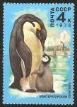Sellos del Mundo : Europa : Rusia : Emperor penguins-pingüino emperador
