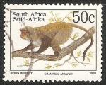sello : Africa : Sudáfrica : Samango money-mono samango        Inicio Guía de Naturaleza        Gran Cinco        Gato        Per