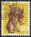 Sellos de Europa - Suiza -  Pro juventude-Lepus europaeusliebre común-