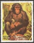 Sellos de Asia - Emiratos Árabes Unidos -  Gorila